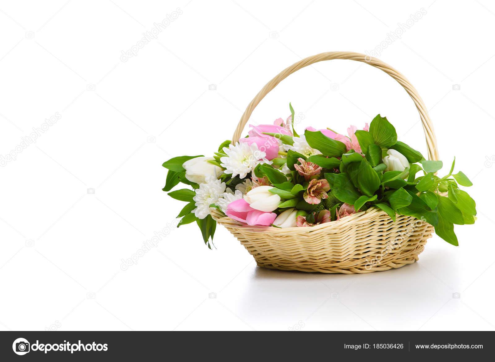 красивые цветы фото крупным планом