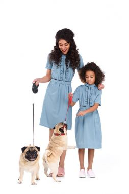 young mother and daughter in similar dresses with pugs on leashes isolated on white