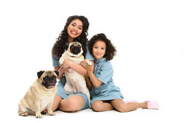 happy young mother and daughter sitting on floor with two adorable pugs isolated on white