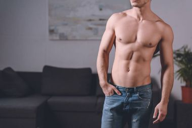 cropped image of seductive shirtless man standing in room
