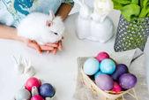 Fényképek A női kéz a húsvéti tojást a tábla fehér nyuszi