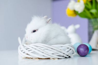 Bunny in nest by colored Easter eggs on table