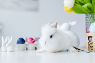 Fluffy bunny by painted eggs with Easter decor on table