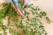 virágüzlet, tetovált kezek intézi a zöld növények a munkahelyen részleges kiadványról