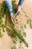 vágott lövés a virágárus, tetovált kezek intézi a zöld növények a munkahelyen