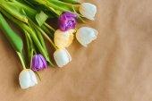Fotografie pohled shora krásný Tulipán květin na kraftový papír