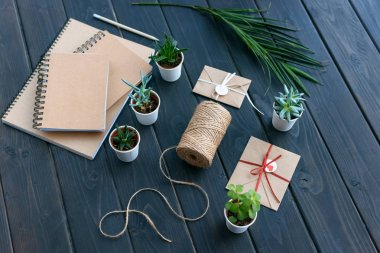 high angle view of succulents in pots, notebooks, palm leaf, rope and envelopes on table top