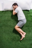 Fotografie overhead view of young man sleeping on pillows on green lawn