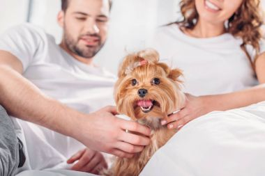 selective focus of couple in love with yorkshire terrier resting on bed together