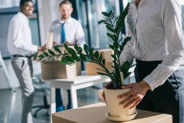 cropped shot of businesswoman holding potted plant and businessmen standing behind while moving in new office