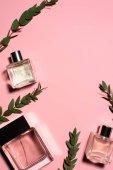 Draufsicht auf Parfümflaschen mit grünen Zweigen auf rosa Oberfläche