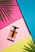 Draufsicht der Flasche Parfüm auf bunten Oberfläche mit Palm verlässt