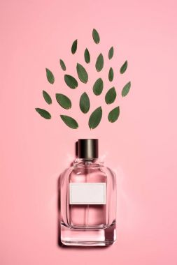 top view of bottle of aromatic perfume with composed green leaves on pink surface
