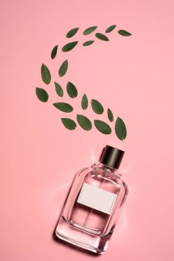 top view of bottle of perfume with composed green leaves on pink surface