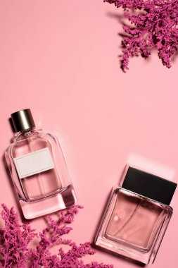 top view of bottles of perfumes with pink branches on pink surface