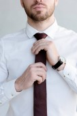 cropped view of businessman in tie and watch posing near white wall