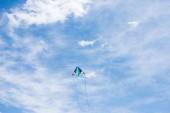 nízký úhel pohled draka s zatažené obloze na pozadí