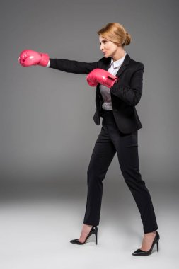 executive businesswoman in suit and pink boxing gloves, isolated on grey