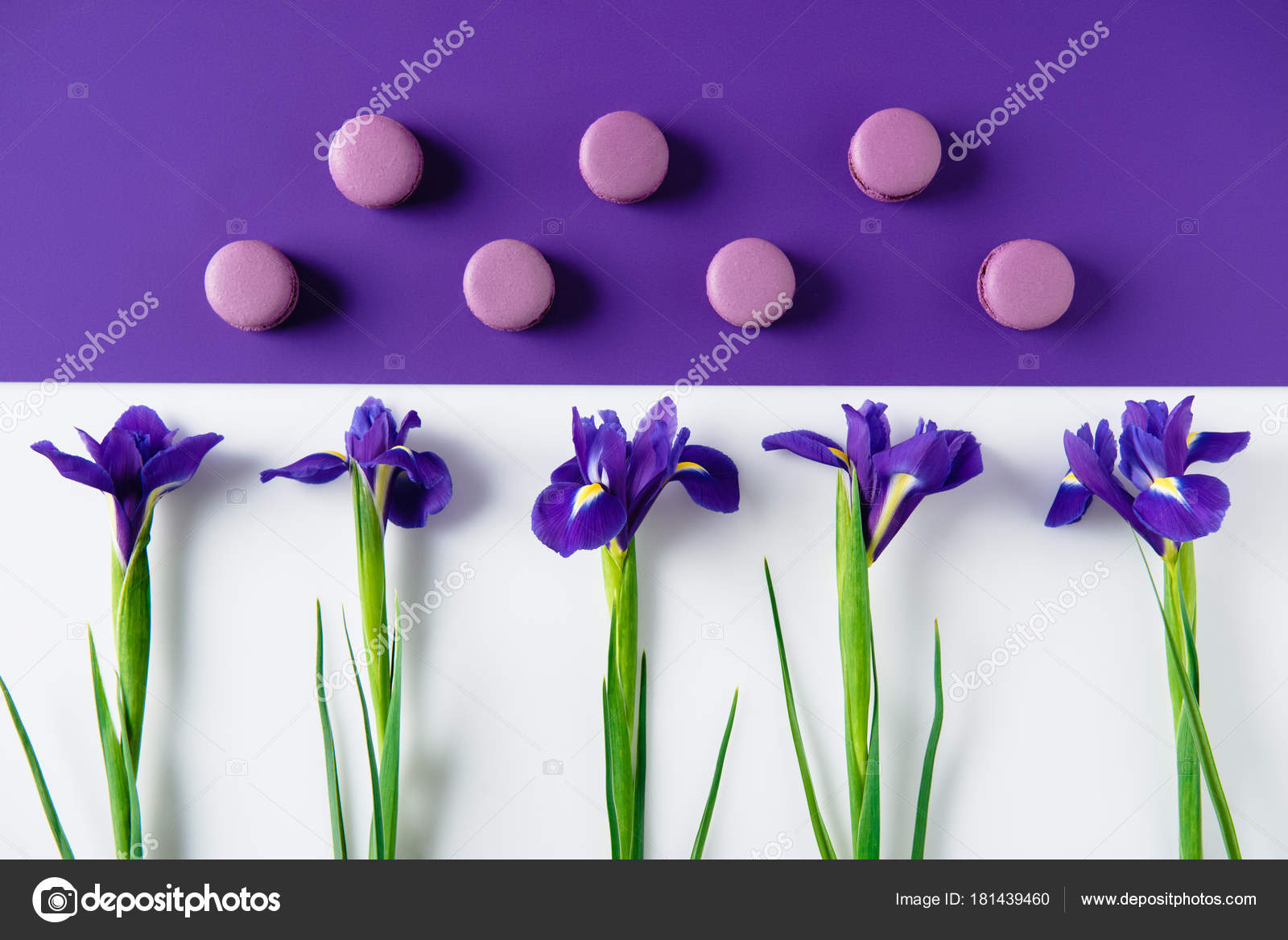 Flat Lay Composition Iris Flowers Delicious Macaron Cookies Purple