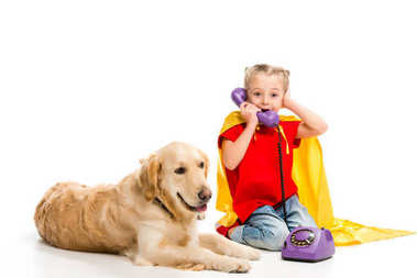 Lying golden retriever  with shocked little supergirl talking on phone isolated on white