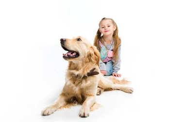 Stylish child and lying dog with collar isolated on white