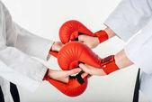oříznutý obraz karate bojovníci, drželi se za ruce v rukavicích izolované na bílém