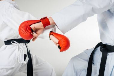 cropped image of karate fighters training in gloves isolated on white
