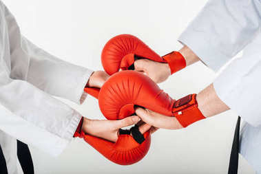 cropped image of karate fighters holding hands in gloves isolated on white