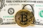 a fehér bitcoin és a dollár bankjegyek kiadványról