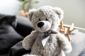 Photo close-up view of beautiful grey teddy bear on sofa