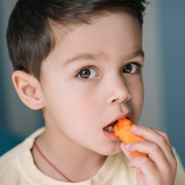 portrait of adorable boy eating fresh carrot and looking at camera