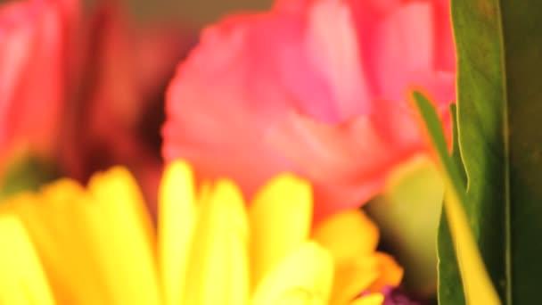 ze zaměření kytice
