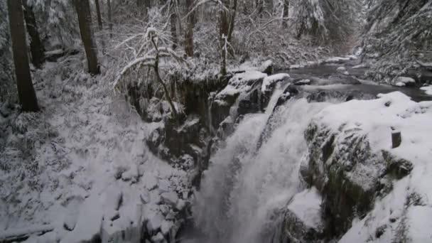 nad zasněženou vodopád, obklopen stromy