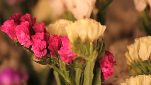 rotující růžové a bílé květy