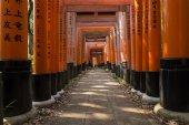 Kyoto Fushimi Inari Shrine oranžové brány