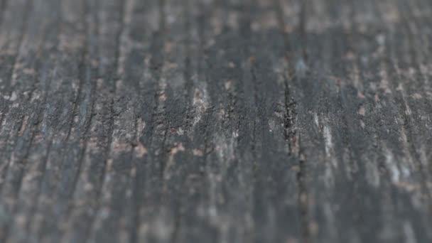 Starý šedý ošlehaný dřevěný panenka výstřel s mělkým ostřením
