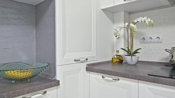 Moderní bílý dřevěný kuchyňský interiér