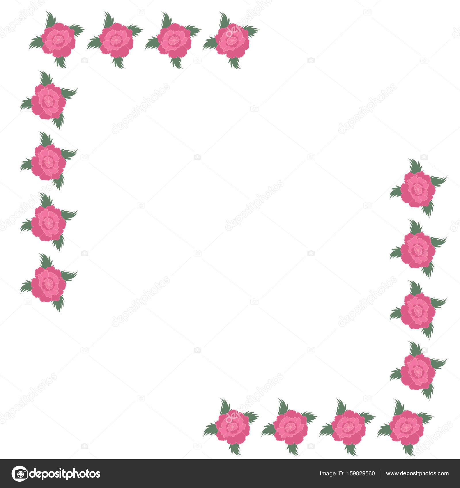 Rosa Pfingstrose Rahmenecke Auf Einem Weißen Hintergrund Grußkarte Einladung  Hochzeit Geburtstag Valentinstag Mutter Tag Veteranen Tag