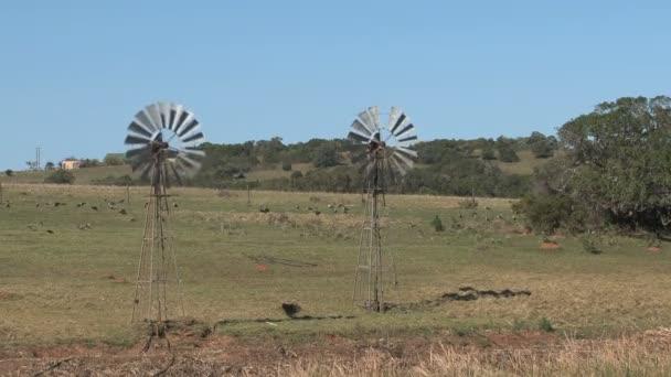 A Dél-afrikai táj szélmalmok