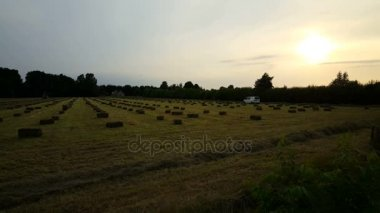 Agricultural machine making hay bales