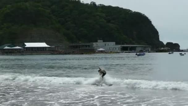 Hullám szörfözés a Csendes-óceán
