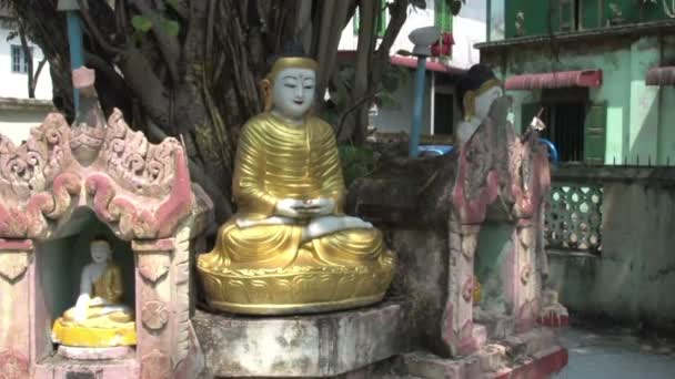 Yangon, sochy Buddhy pod stromem