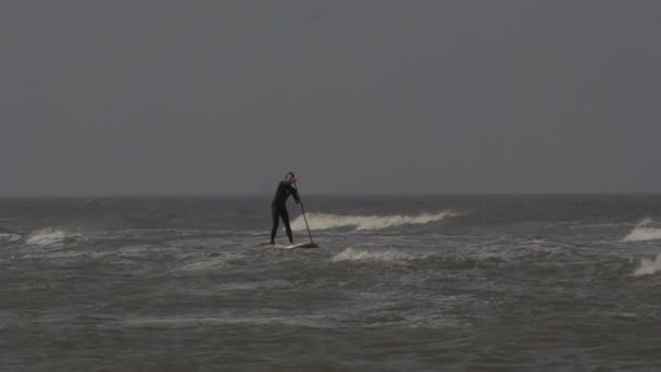 rackové na pláže Severního moře