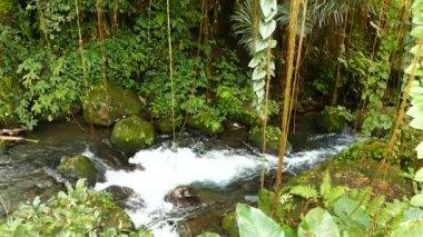 Waterfall at Desa Pakraman rice field, Bali, Indonesia