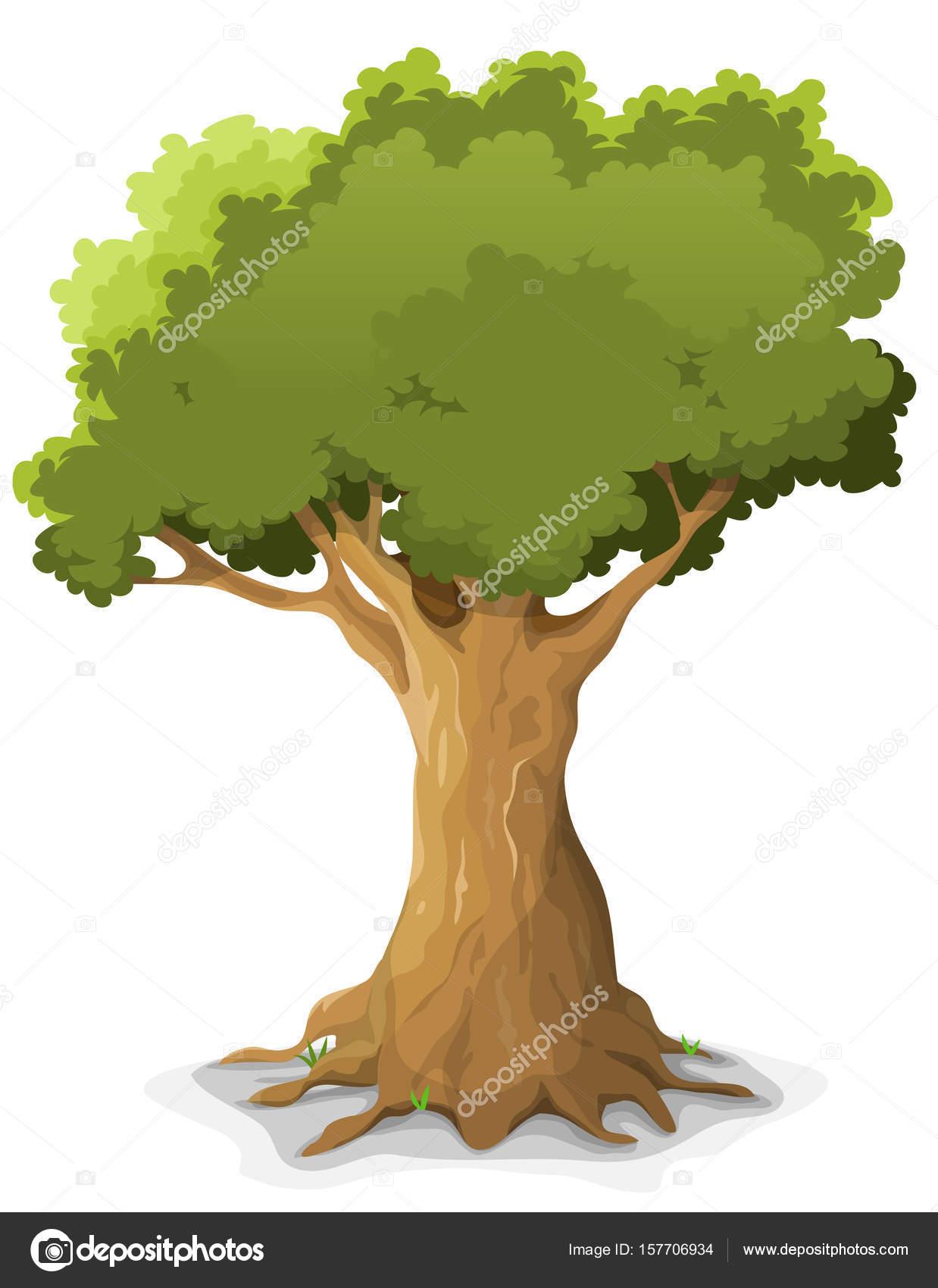 Dibujos Arboles Robles Dibujos Animados Gran Roble árbol Verde