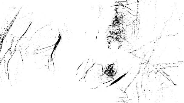 Grunge nouzi animované textury Loop / animace grafiky vinobraní pohybu s černou a bílou grunge zoufalý textury, modely praskliny, nečistoty a skvrny