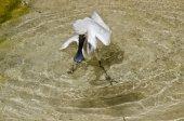 Královská kolpíků pták