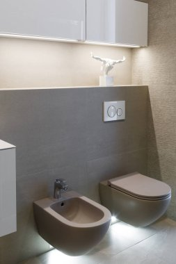 Brown toilet and bidet. Modern wc interior. Economic toilet white flush press with two separate buttons for flushing toilet. Bottom light. Shelf with statuette. Vertically framed shot.