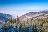 Zimní horské krajině s mlha v údolí, Pustevny.