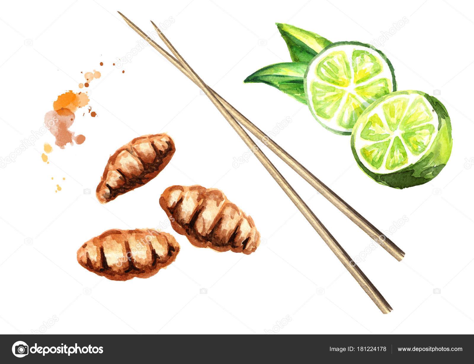 Insekten in der kuche for Maden in der kuche